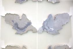 Metamorphoses (detail). 2016. Iron, coal & limestone in resin.